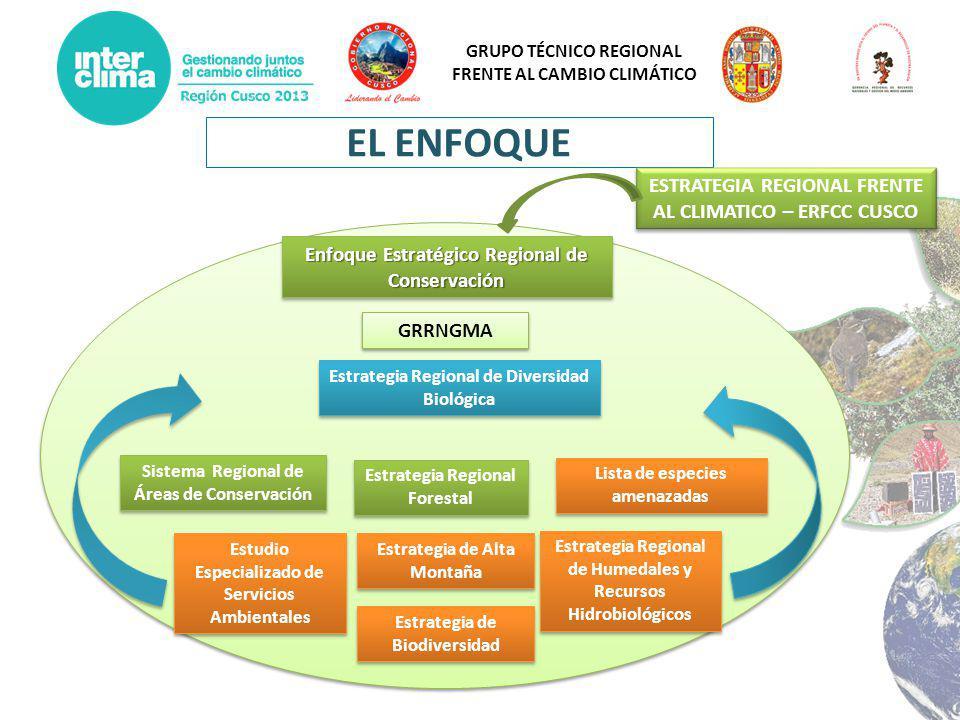 GRUPO TÉCNICO REGIONAL FRENTE AL CAMBIO CLIMÁTICO EL ENFOQUE Enfoque Estratégico Regional de Conservación Estudio Especializado de Servicios Ambiental