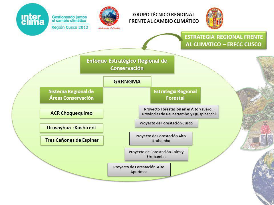 GRUPO TÉCNICO REGIONAL FRENTE AL CAMBIO CLIMÁTICO Enfoque Estratégico Regional de Conservación GRRNGMA Estrategia Regional Forestal Sistema Regional d