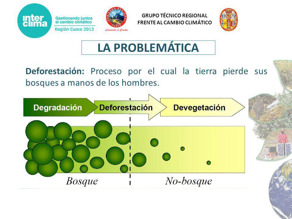 GRUPO TÉCNICO REGIONAL FRENTE AL CAMBIO CLIMÁTICO LA PROBLEMÁTICA Deforestación: Proceso por el cual la tierra pierde sus bosques a manos de los hombr