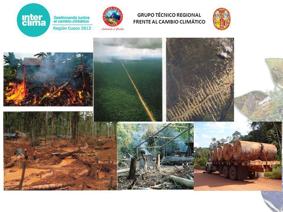 GRUPO TÉCNICO REGIONAL FRENTE AL CAMBIO CLIMÁTICO AñoSuperficie deforestada Tasa de deforestación 2000-200558.863,4211.772,68 Ha/año 2005-200997.803,0024.450,75 ha/año 2000-2009156.666,4217.407,38 Ha/año La deforestación acumulada es actualmente de 731.877,03 Ha