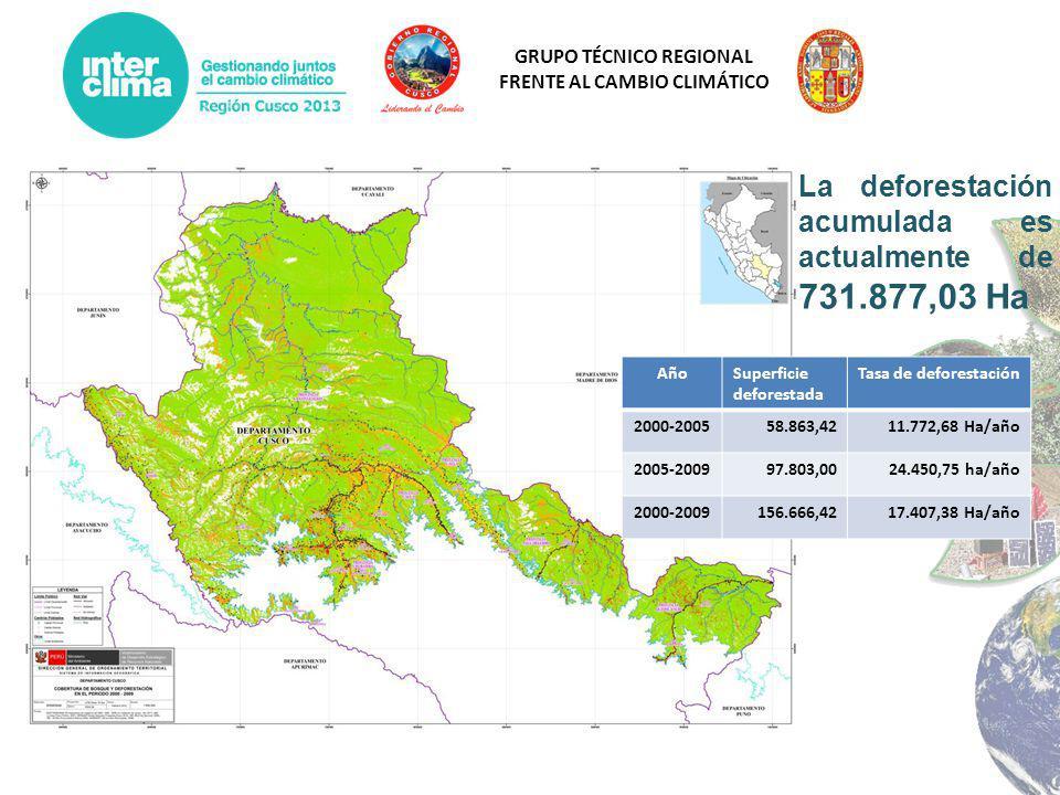 GRUPO TÉCNICO REGIONAL FRENTE AL CAMBIO CLIMÁTICO AñoSuperficie deforestada Tasa de deforestación 2000-200558.863,4211.772,68 Ha/año 2005-200997.803,0