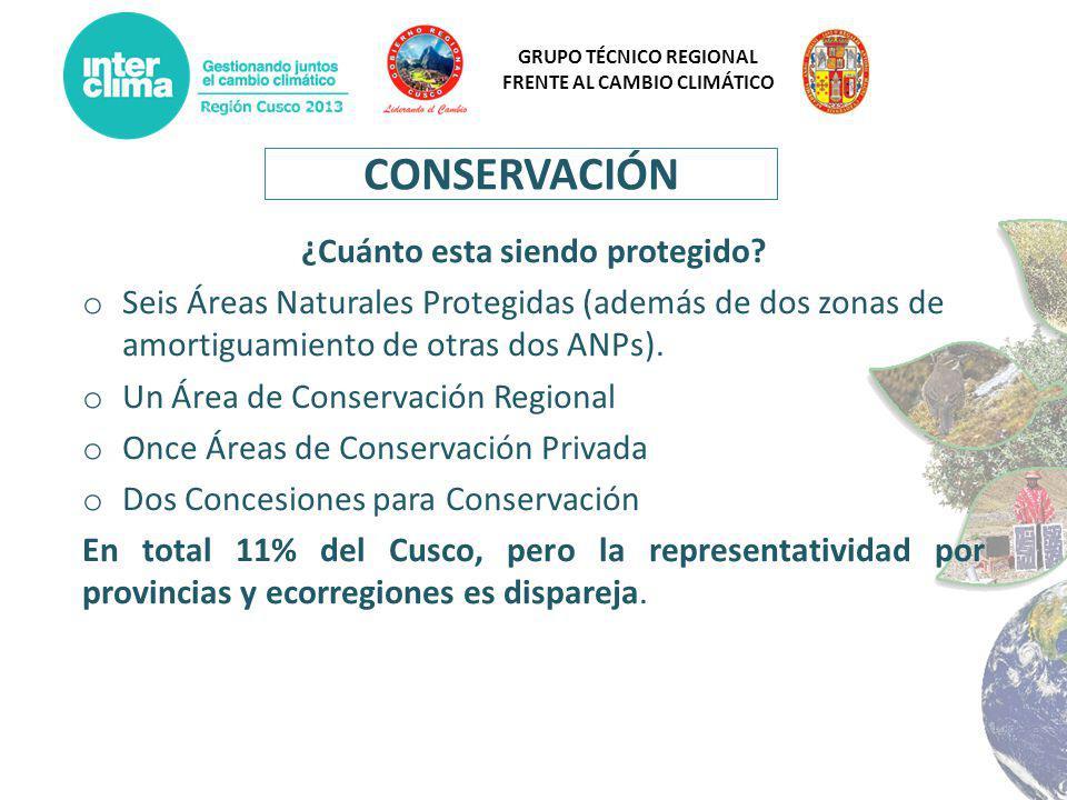 GRUPO TÉCNICO REGIONAL FRENTE AL CAMBIO CLIMÁTICO CONSERVACIÓN ¿Cuánto esta siendo protegido? o Seis Áreas Naturales Protegidas (además de dos zonas d