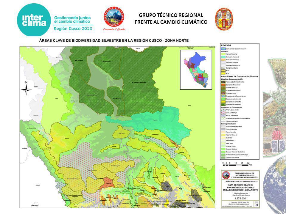 GRUPO TÉCNICO REGIONAL FRENTE AL CAMBIO CLIMÁTICO Enfoque Estratégico Regional de Conservación GRRNGMA Estrategia Regional Forestal Sistema Regional de Áreas Conservación ESTRATEGIA REGIONAL FRENTE AL CLIMATICO – ERFCC CUSCO ACR Choquequirao Urusayhua -Koshireni Tres Cañones de Espinar Proyecto de Forestación Alto Apurímac Proyecto de Forestación Calca y Urubamba Proyecto de Forestación Alto Urubamba Proyecto de Forestación Cusco Proyecto Forestación en el Alto Yavero, Provincias de Paucartambo y Quispicanchi