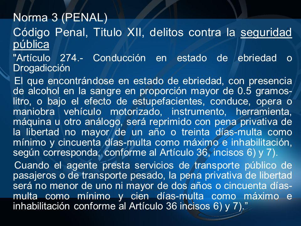 Norma 3 (PENAL) Código Penal, Titulo XII, delitos contra la seguridad pública