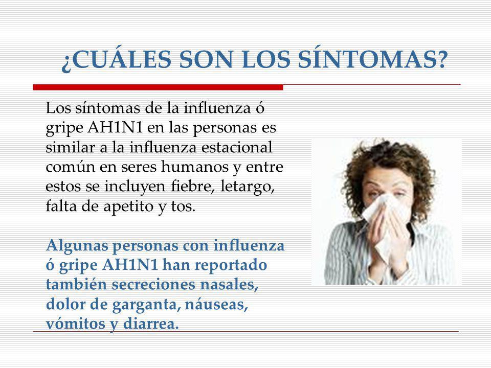 Los síntomas de la influenza ó gripe AH1N1 en las personas es similar a la influenza estacional común en seres humanos y entre estos se incluyen fiebr