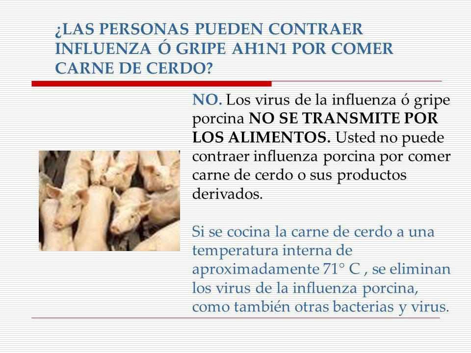 ¿LAS PERSONAS PUEDEN CONTRAER INFLUENZA Ó GRIPE AH1N1 POR COMER CARNE DE CERDO? NO. Los virus de la influenza ó gripe porcina NO SE TRANSMITE POR LOS