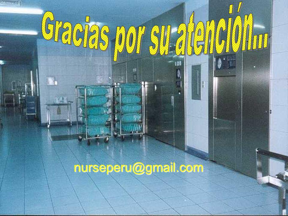 nurseperu@gmail.com