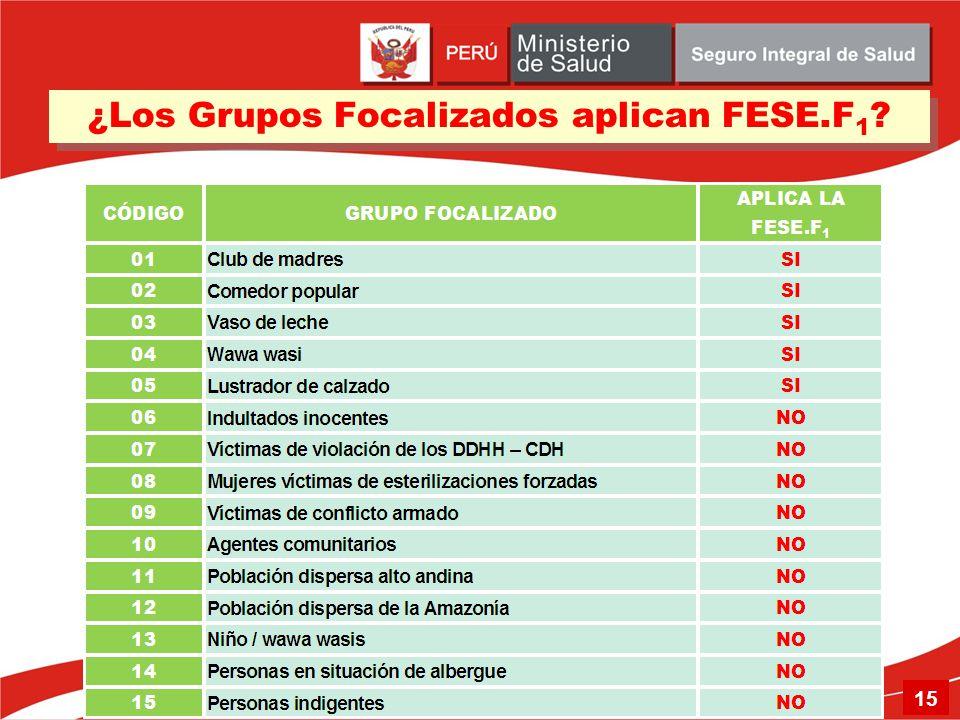 ¿Los Grupos Focalizados aplican FESE.F 1 ? 15