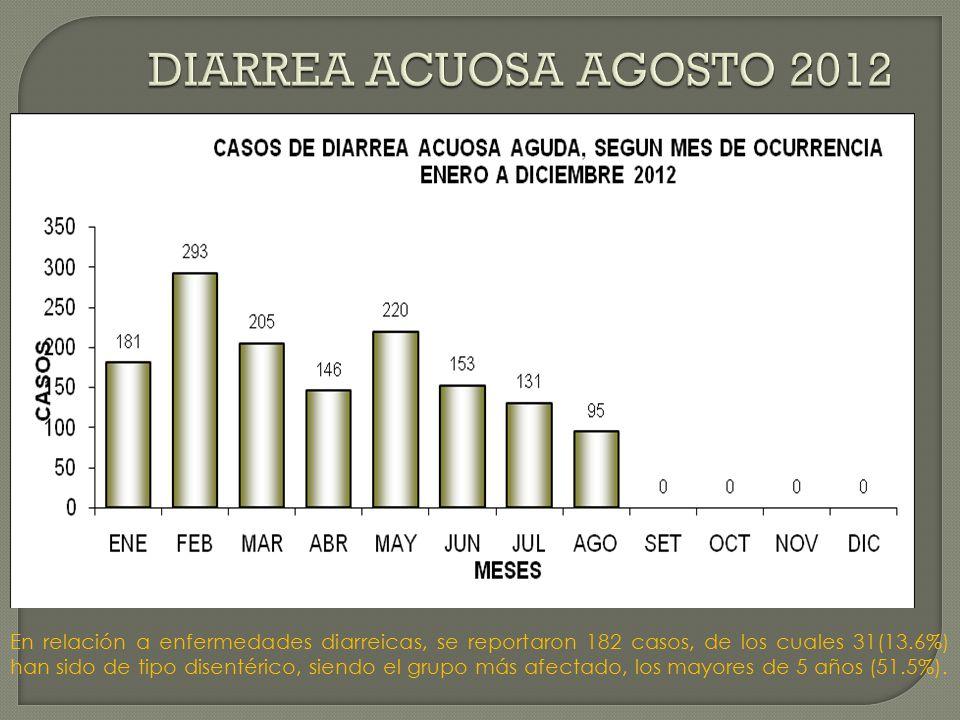En relación a enfermedades diarreicas, se reportaron 182 casos, de los cuales 31(13.6%) han sido de tipo disentérico, siendo el grupo más afectado, los mayores de 5 años (51.5%).
