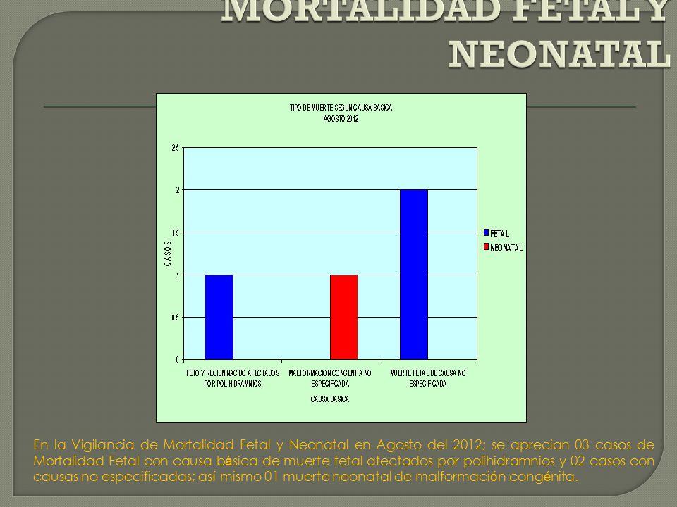 En la Vigilancia de Mortalidad Fetal y Neonatal en Agosto del 2012; se aprecian 03 casos de Mortalidad Fetal con causa b á sica de muerte fetal afectados por polihidramnios y 02 casos con causas no especificadas; as í mismo 01 muerte neonatal de malformaci ó n cong é nita.