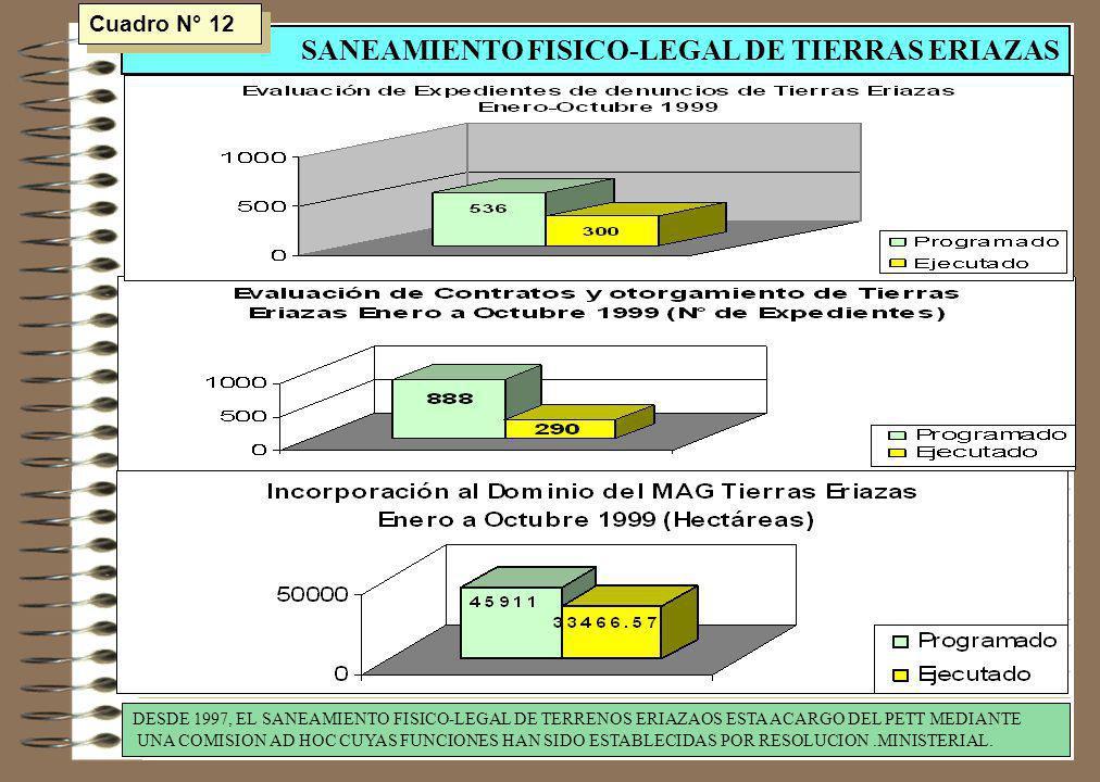 SANEAMIENTO FISICO-LEGAL DE TIERRAS ERIAZAS DESDE 1997, EL SANEAMIENTO FISICO-LEGAL DE TERRENOS ERIAZAOS ESTA ACARGO DEL PETT MEDIANTE UNA COMISION AD