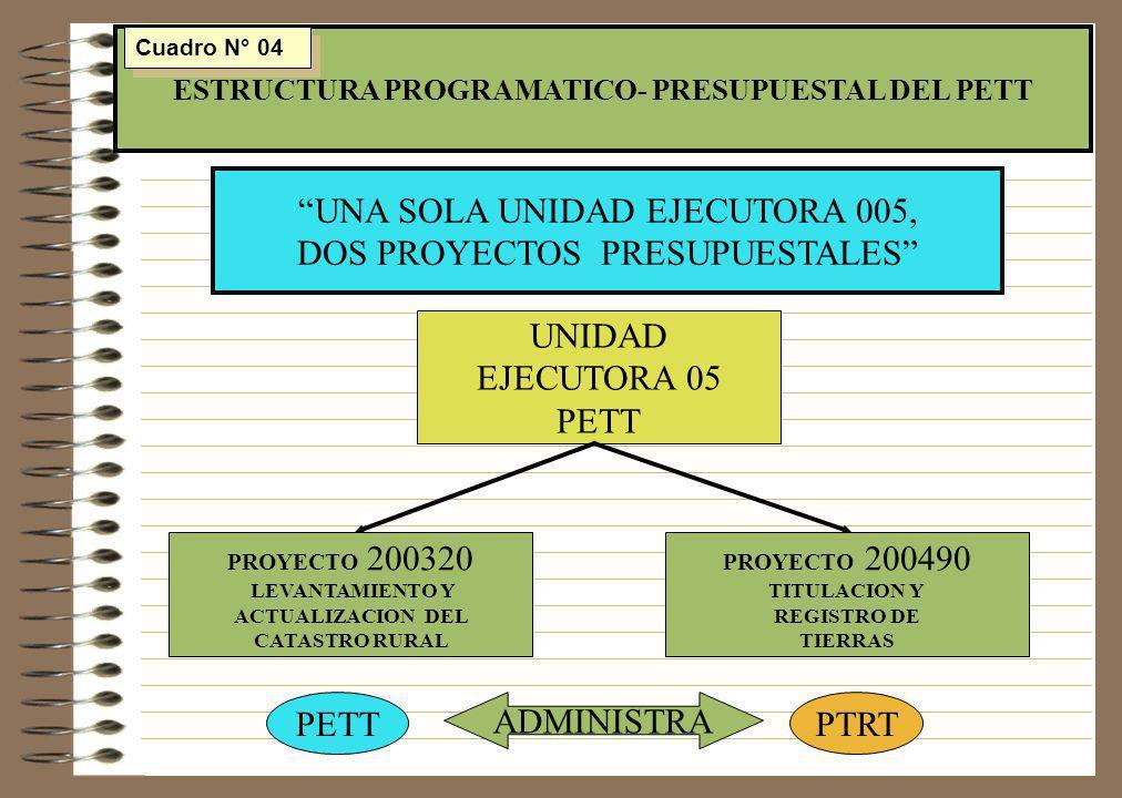 MISIÓN Y OBJETIVOS DEL PETT 1.- LOGRAR LA TITULACION Y EL SANEAMIENTO LEGAL DE LA PROPIEDAD Y LA POSESION DE LOS PREDIOS RURALES 2.- CONTAR CON UN NUEVO CATASTRO RURAL MODERNO Y DE CARÁCTER JURIDICO OBJETIVOS (PROPOSITO) FORMALIZAR LA PROPIEDAD DE LA TIERRA DE USO AGRARIO EN TODO EL PAIS MISION 3.- FORTALECER EL SISTEMA DE REGISTRO DE LA PROPIEDAD INMUEBLE RURAL Cuadro N° 05