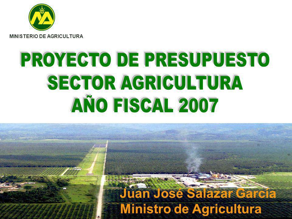 MINISTERIO DE AGRICULTURA Juan José Salazar García Ministro de Agricultura