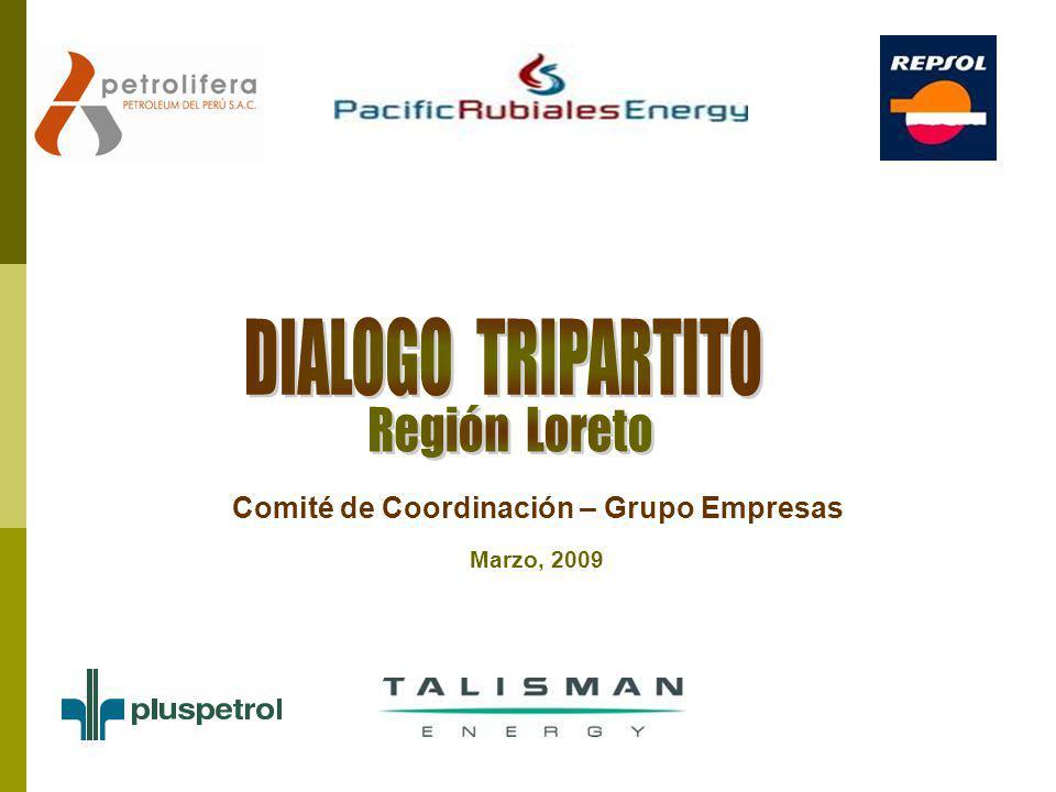 Comité de Coordinación – Grupo Empresas Marzo, 2009