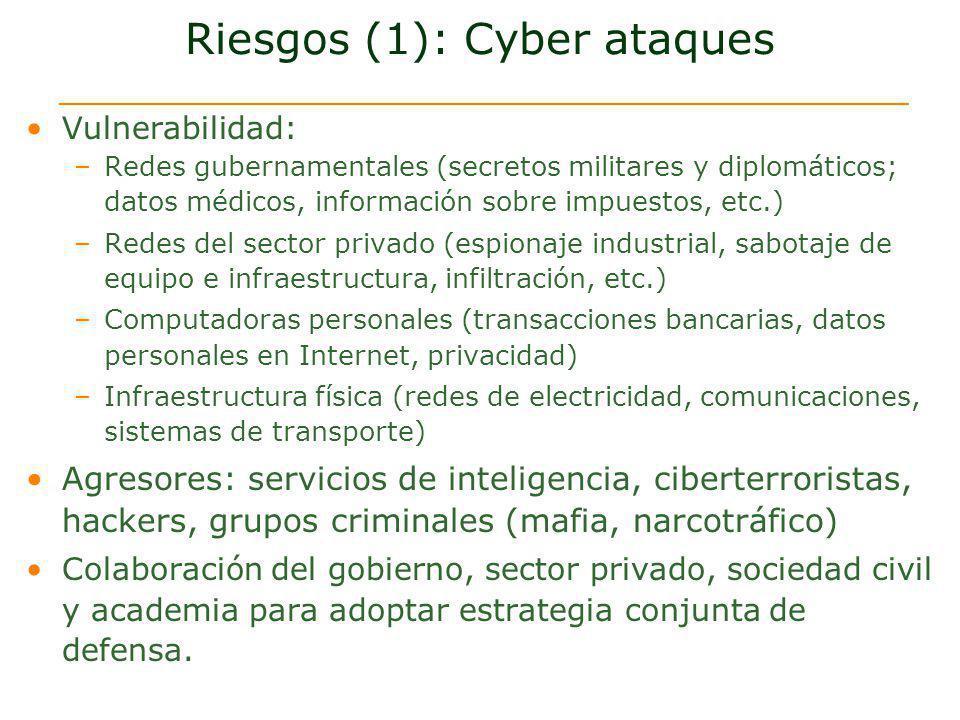 Riesgos (1): Cyber ataques Vulnerabilidad: –Redes gubernamentales (secretos militares y diplomáticos; datos médicos, información sobre impuestos, etc.