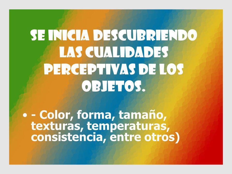 Se inicia descubriendo las cualidades perceptivas de los objetos. - Color, forma, tamaño, texturas, temperaturas, consistencia, entre otros)