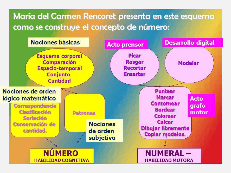 María del Carmen Rencoret presenta en este esquema como se construye el concepto de número: Esquema corporal Comparación Espacio-temporal Conjunto Can