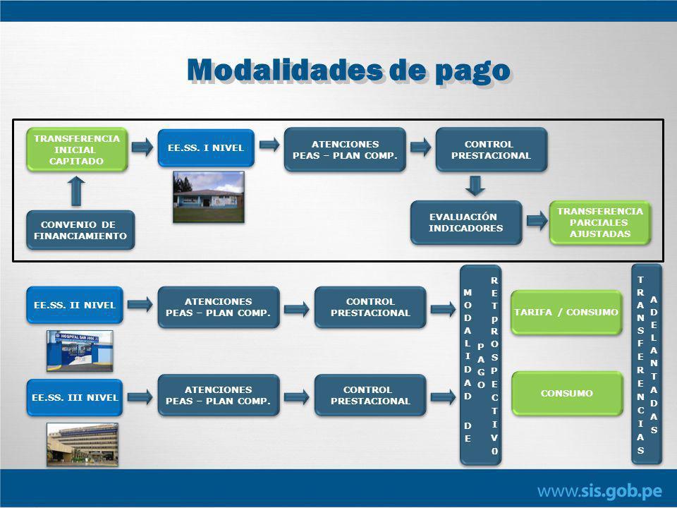 Modalidades de pago CONVENIO DE FINANCIAMIENTO CONVENIO DE FINANCIAMIENTO TRANSFERENCIA INICIAL CAPITADO TRANSFERENCIA INICIAL CAPITADO EE.SS.