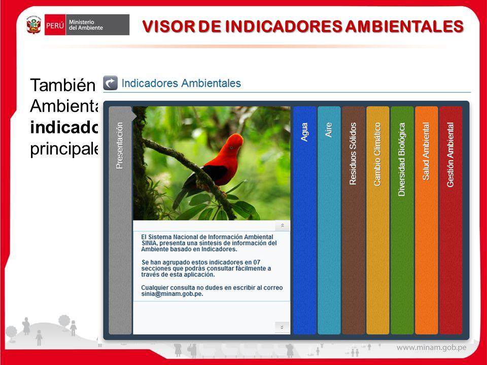 También se cuenta con un Conjunto de Indicadores Ambientales, el cual ofrece, con alrededor de 25 indicadores, una visión sintética de la situación de los principales tópicos ambientales del país.