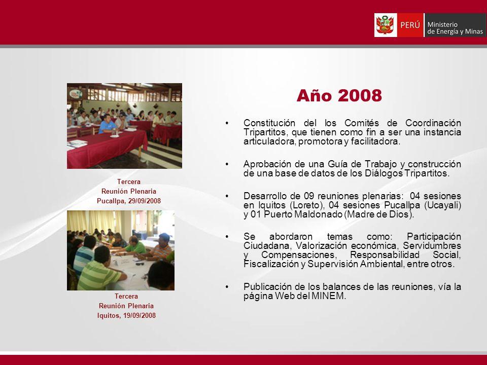 Constitución del los Comités de Coordinación Tripartitos, que tienen como fin a ser una instancia articuladora, promotora y facilitadora.