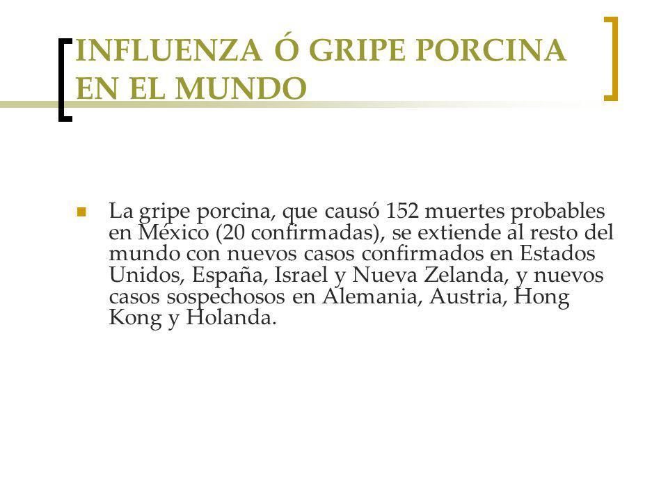 INFLUENZA Ó GRIPE PORCINA EN EL MUNDO La gripe porcina, que causó 152 muertes probables en México (20 confirmadas), se extiende al resto del mundo con nuevos casos confirmados en Estados Unidos, España, Israel y Nueva Zelanda, y nuevos casos sospechosos en Alemania, Austria, Hong Kong y Holanda.