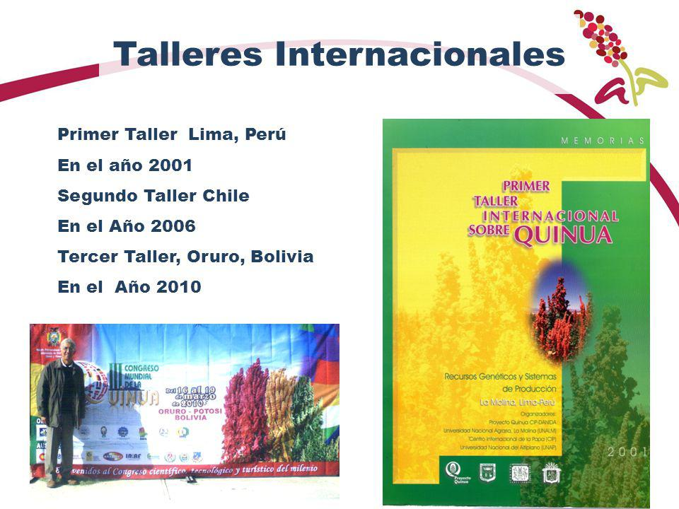 Talleres Internacionales Primer Taller Lima, Perú En el año 2001 Segundo Taller Chile En el Año 2006 Tercer Taller, Oruro, Bolivia En el Año 2010