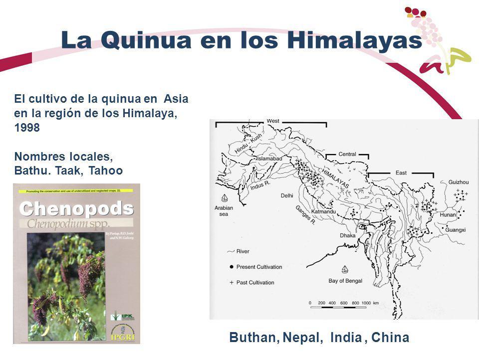 La Quinua en los Himalayas El cultivo de la quinua en Asia en la región de los Himalaya, 1998 Nombres locales, Bathu. Taak, Tahoo Buthan, Nepal, India