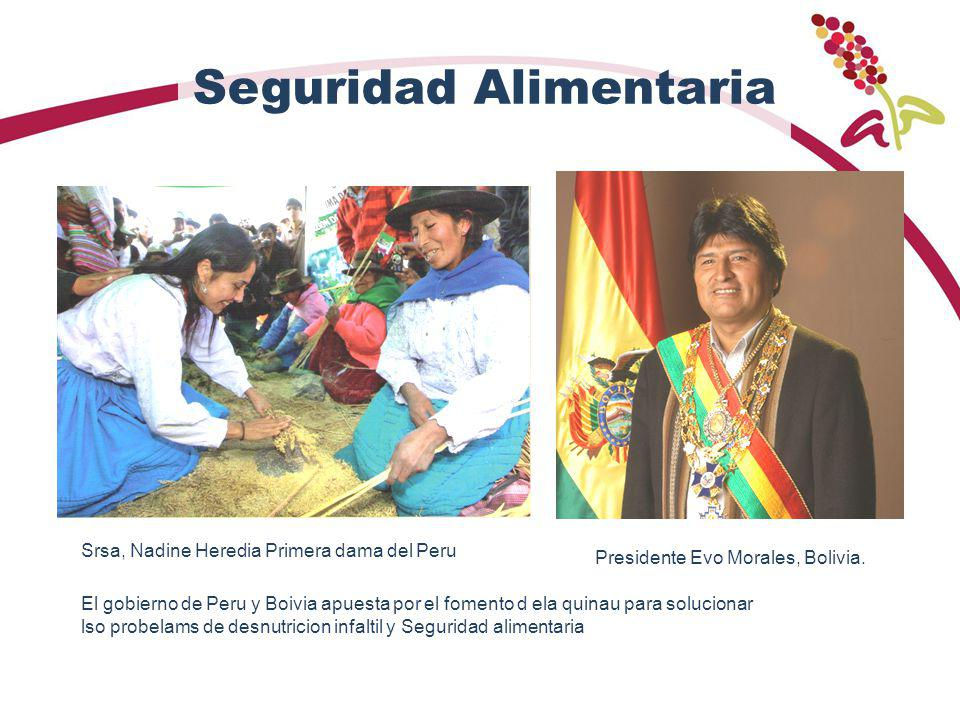 Seguridad Alimentaria El gobierno de Peru y Boivia apuesta por el fomento d ela quinau para solucionar lso probelams de desnutricion infaltil y Seguridad alimentaria Srsa, Nadine Heredia Primera dama del Peru Presidente Evo Morales, Bolivia.