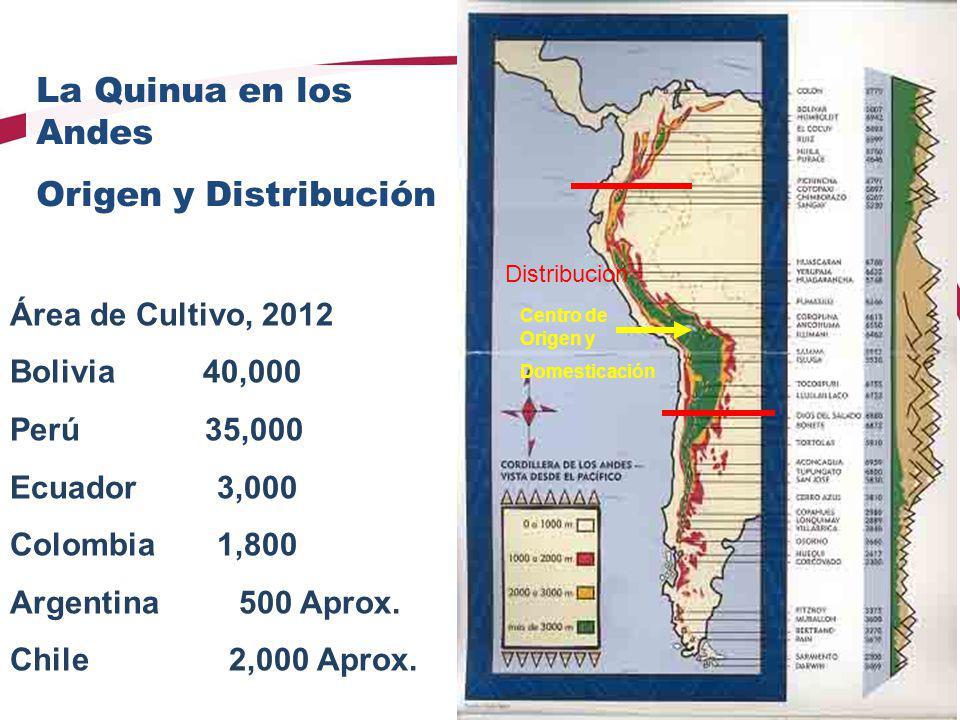 Área de Cultivo, 2012 Bolivia 40,000 Perú 35,000 Ecuador 3,000 Colombia 1,800 Argentina 500 Aprox. Chile 2,000 Aprox. Centro de Origen y Domesticación