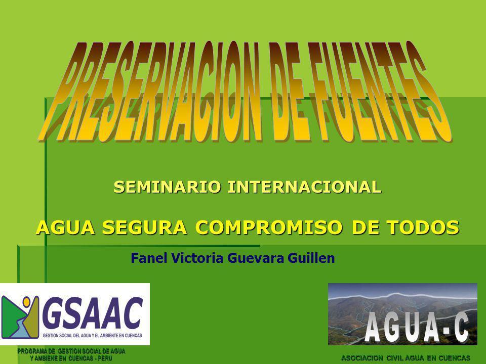 PROGRAMA DE GESTION SOCIAL DE AGUA Y AMBIENE EN CUENCAS - PERU Fanel Victoria Guevara Guillen ASOCIACION CIVIL AGUA EN CUENCAS SEMINARIO INTERNACIONAL