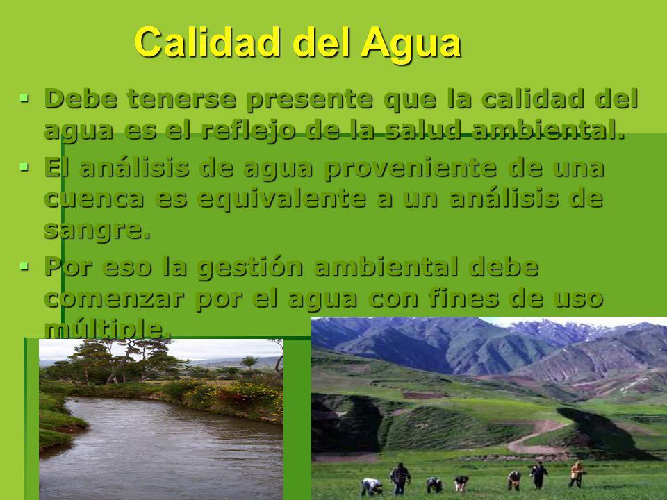 Debe tenerse presente que la calidad del agua es el reflejo de la salud ambiental. Debe tenerse presente que la calidad del agua es el reflejo de la s