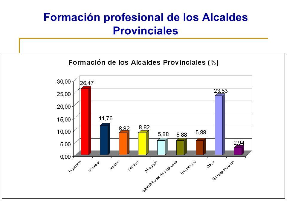 Formación profesional de los Alcaldes Provinciales