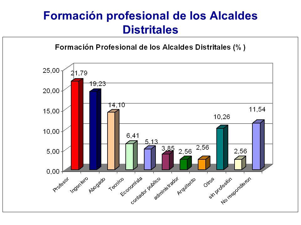 Formación profesional de los Alcaldes Distritales