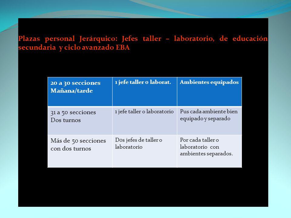 AUXILIARES DE EDUCACION ProgramaN° secciones N° plaza y cargo Observación INICIALPor cada 02 secciones 01 Aux. Educ. SEC. MENORPor cada 08 secciones 0
