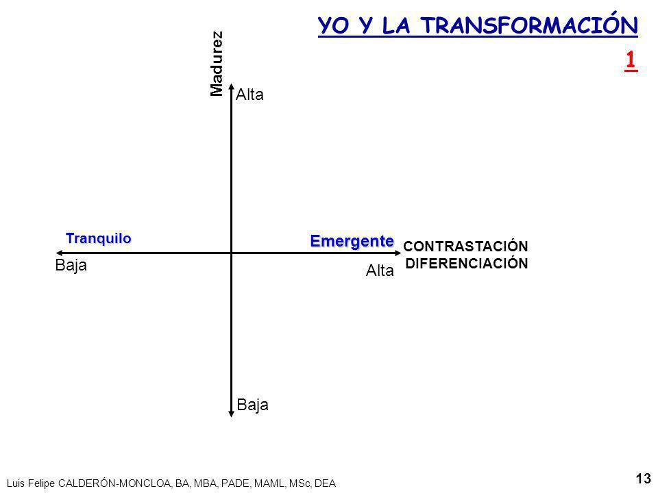 Luis Felipe CALDERÓN-MONCLOA, BA, MBA, PADE, MAML, MSc, DEA 13 Madurez EmergenteTranquilo YO Y LA TRANSFORMACIÓN 1 CONTRASTACIÓN DIFERENCIACIÓN Baja A