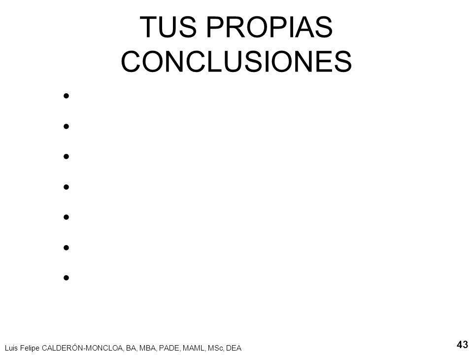 Luis Felipe CALDERÓN-MONCLOA, BA, MBA, PADE, MAML, MSc, DEA 43 TUS PROPIAS CONCLUSIONES