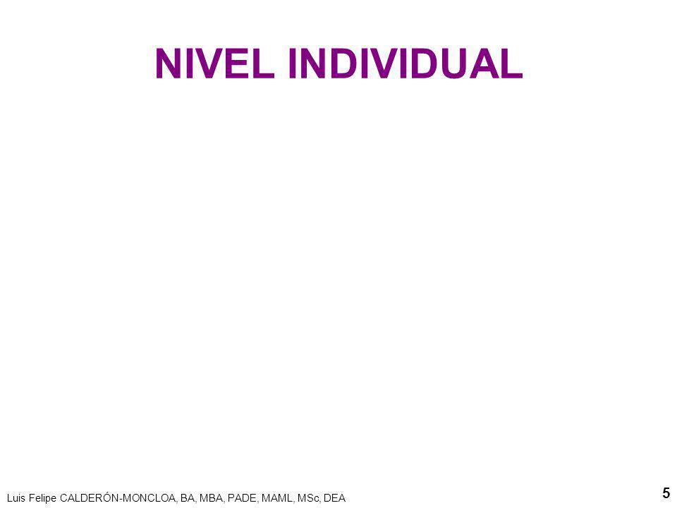 Luis Felipe CALDERÓN-MONCLOA, BA, MBA, PADE, MAML, MSc, DEA 5 NIVEL INDIVIDUAL
