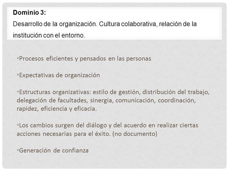 Dominio 3: Desarrollo de la organización. Cultura colaborativa, relación de la institución con el entorno. Procesos eficientes y pensados en las perso