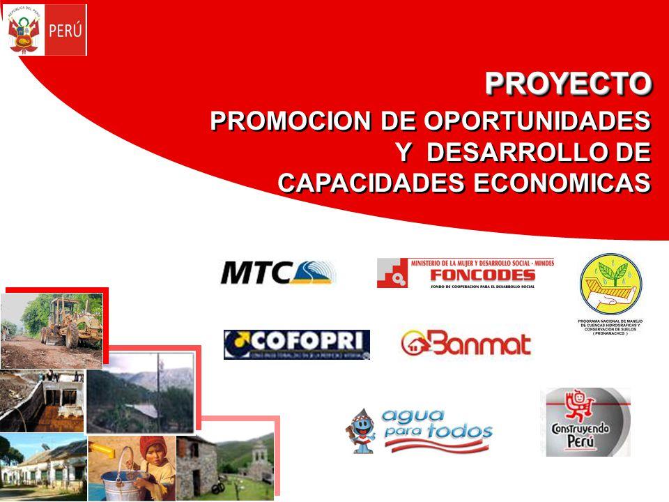 PROYECTO PROMOCION DE OPORTUNIDADES Y DESARROLLO DE CAPACIDADES ECONOMICASPROYECTO