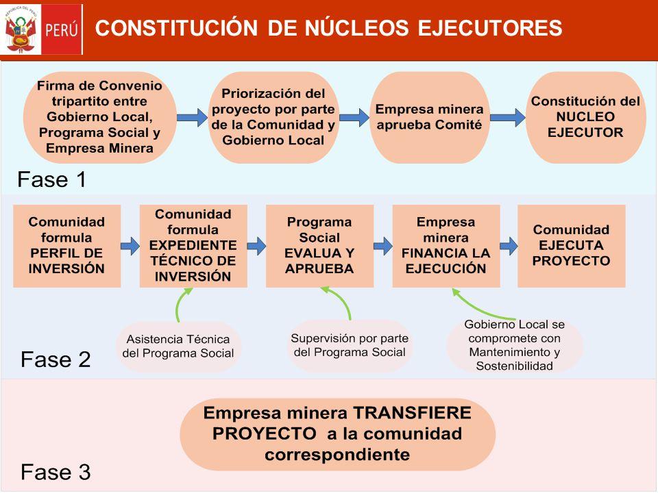 CONSTITUCIÓN DE NÚCLEOS EJECUTORES