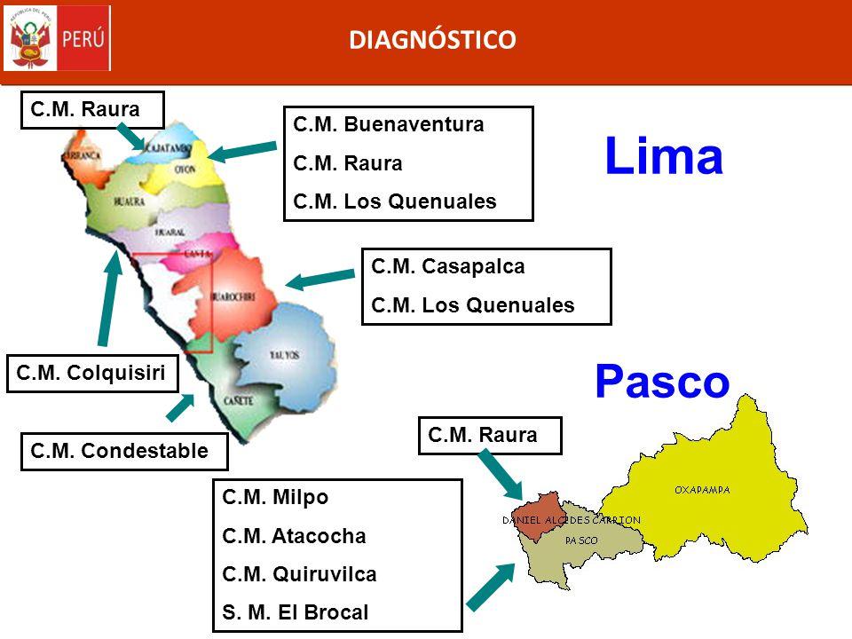 DIAGNÓSTICO Lima C.M. Buenaventura C.M. Raura C.M. Los Quenuales C.M. Casapalca C.M. Los Quenuales C.M. Condestable C.M. Raura C.M. Colquisiri C.M. Mi