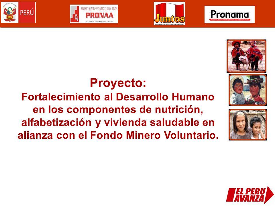 Proyecto: Fortalecimiento al Desarrollo Humano en los componentes de nutrición, alfabetización y vivienda saludable en alianza con el Fondo Minero Vol