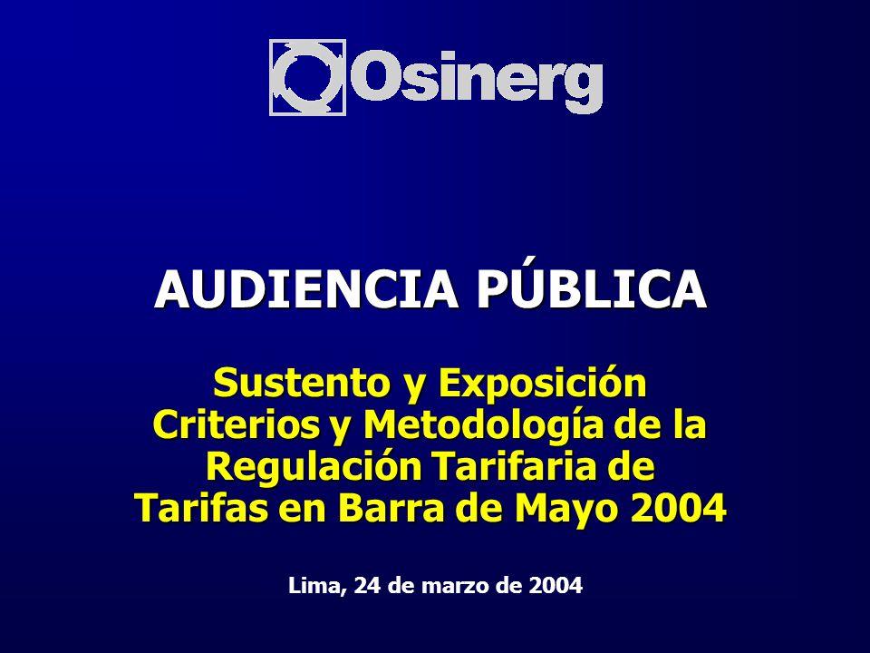 Apertura de la Audiencia Pública Ing. Luis Ganoza de Zavala Director