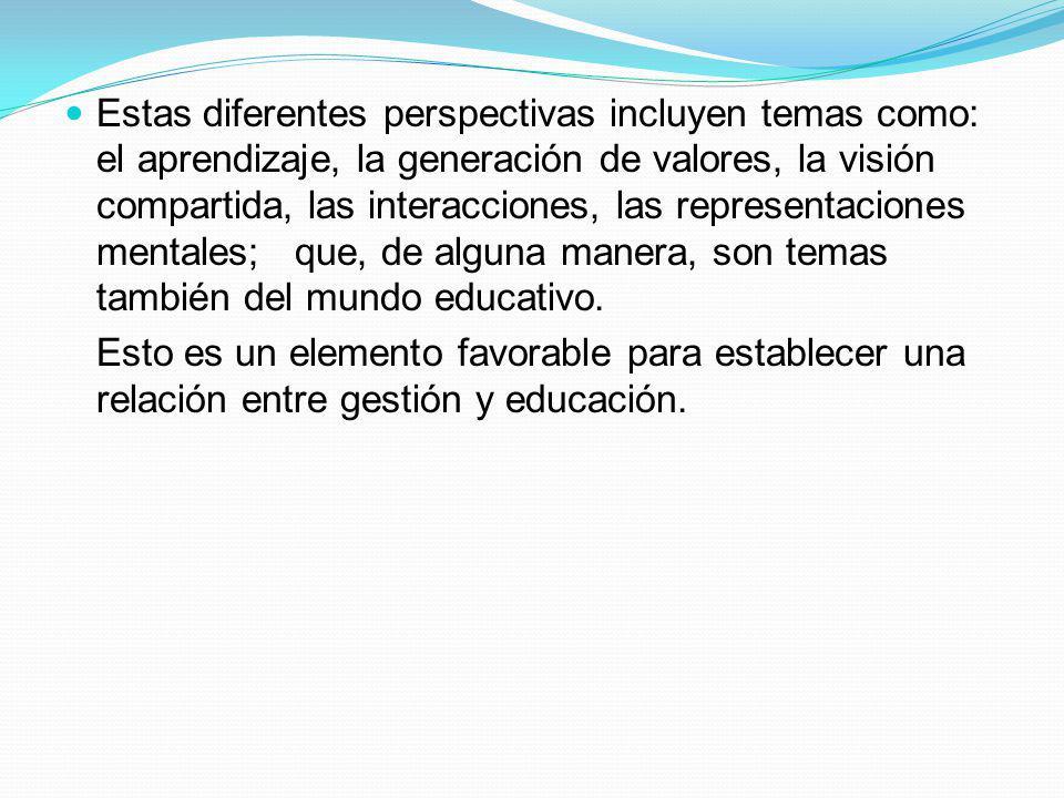 Estas diferentes perspectivas incluyen temas como: el aprendizaje, la generación de valores, la visión compartida, las interacciones, las representaci