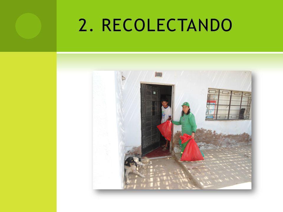 3. SEGREGANDO