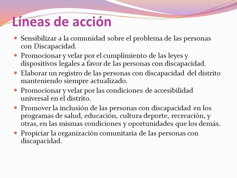 Líneas de acción Sensibilizar a la comunidad sobre el problema de las personas con Discapacidad. Promocionar y velar por el cumplimiento de las leyes