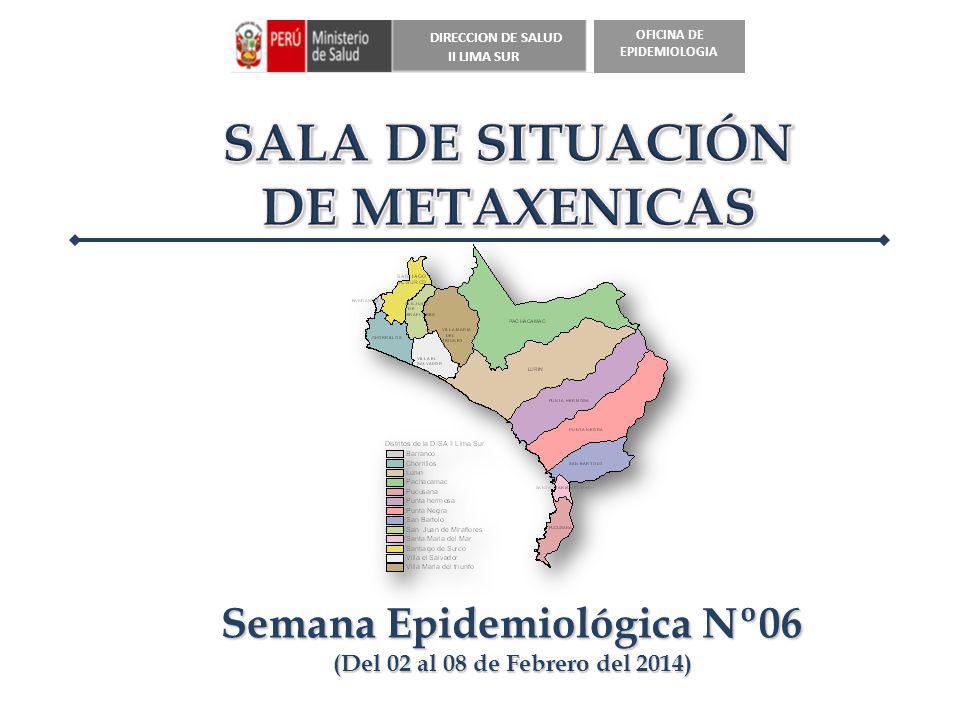 DIRECCION DE SALUD II LIMA SUR OFICINA DE EPIDEMIOLOGIA Semana Epidemiológica Nº06 (Del 02 al 08 de Febrero del 2014)