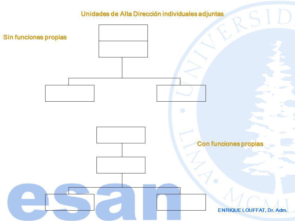 ENRIQUE LOUFFAT, Dr. Adm. Unidades de Alta Dirección individuales adjuntas Sin funciones propias Con funciones propias