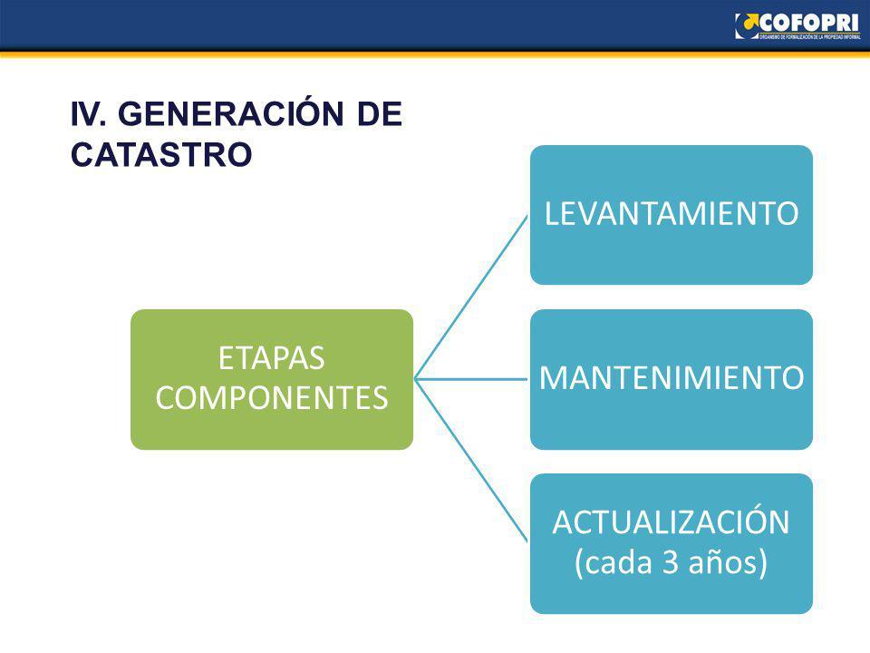IV. GENERACIÓN DE CATASTRO