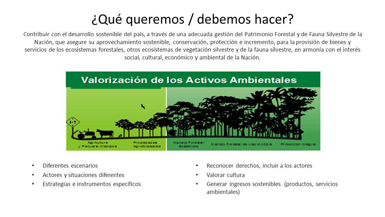 ¿Qué queremos / debemos hacer? Contribuir con el desarrollo sostenible del país, a través de una adecuada gestión del Patrimonio Forestal y de Fauna S